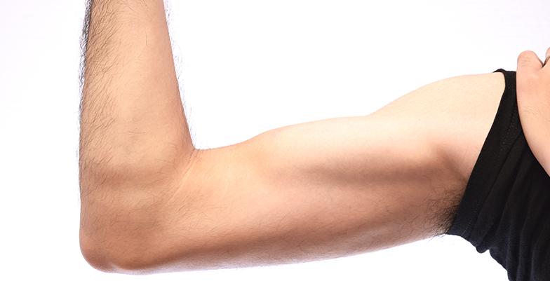 筋肉を増やしたい人